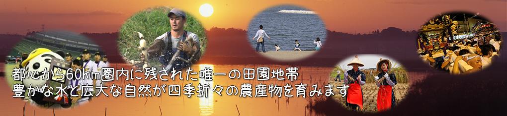 ふるさと納税.jpg